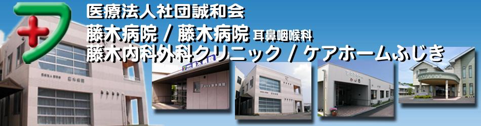 医療法人社団誠和会 藤木病院